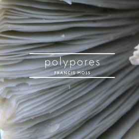 polypores cover1